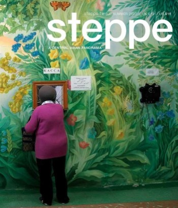 Steppe 2 Cover