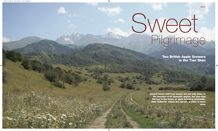 Sweet Pilgrimage_Featured
