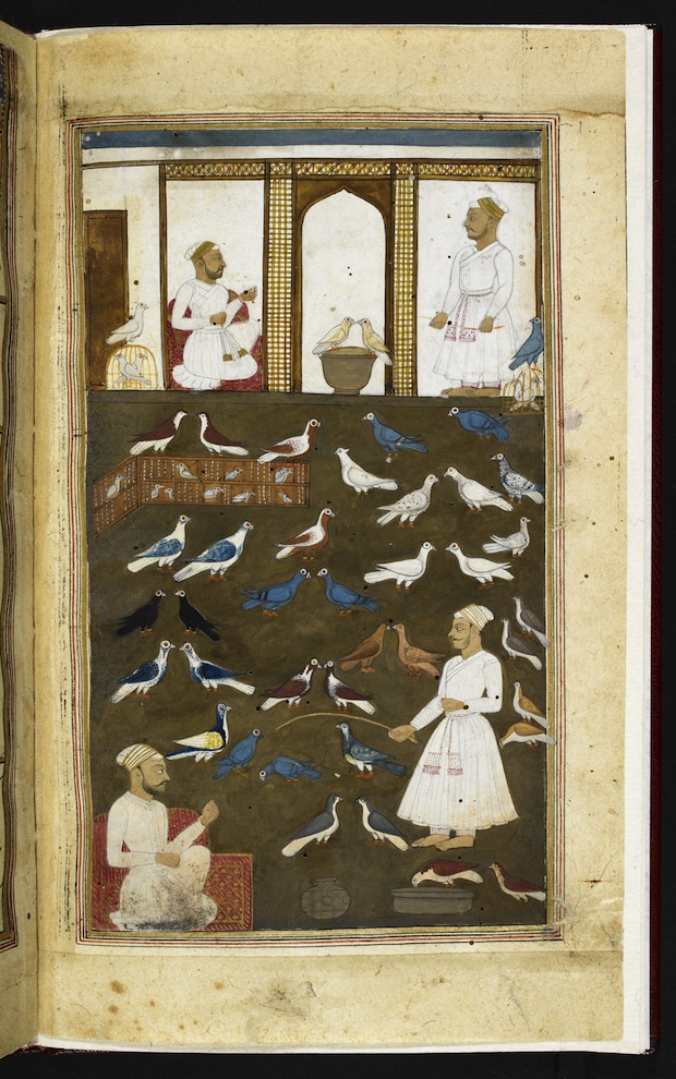 Instructional poem for pigeon-fanciers by Valih Musavi (1788) (c) British Library Board